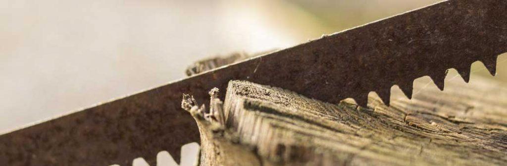 sierra cortando tronco de arbol